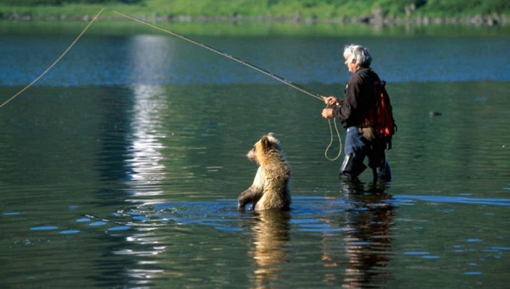 Яндекс про рыбалку